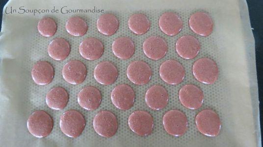 macarons-1