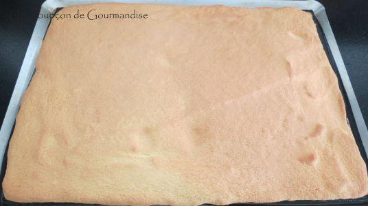 entremets-framboise-chocolat-12