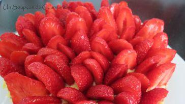 Tarte aux fraises 28