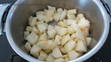 Crumble aux pommes 1