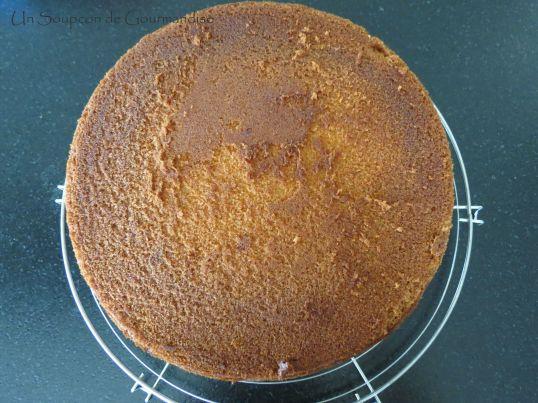 Gâteau abricot-romarin 24