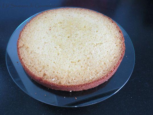 Gâteau abricot-romarin 33