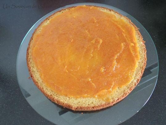 Gâteau abricot-romarin 34