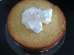 Gâteau abricot-romarin 38