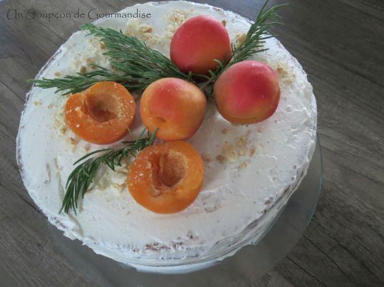 Gâteau abricot-romarin 45